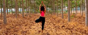 Tips to Improve Your Energy, Rest Habits and Concentration