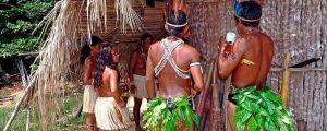How Does COVID-19 Affect Indigenous Communities in Brazil?